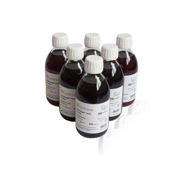 2038-1 FastOrange Yeast Bouillon Broth 6-Pack